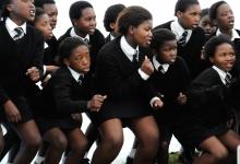 essays on apartheid in africa